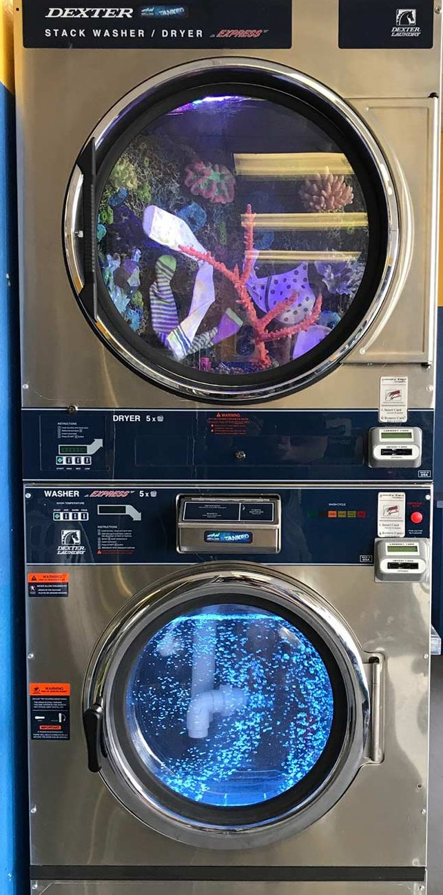 There's Something Fishy about this Las Vegas Coin Laundry